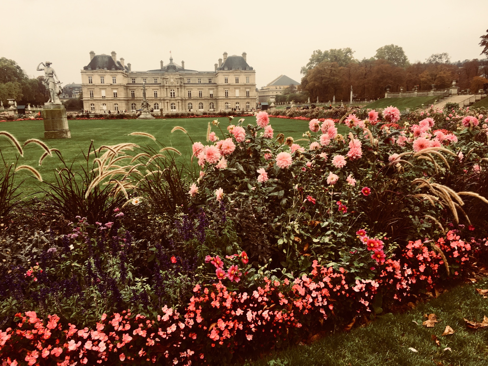 There are flowers in the foreground. There is a statue and building in the distance.